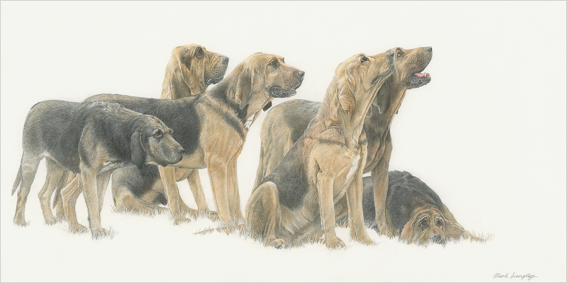 'Waiting for the Off' - Original graphite and colour pencil drawing by Mark Langley Fine Artist - 48 x 24 cm. With existing frame £450. Please enquire.