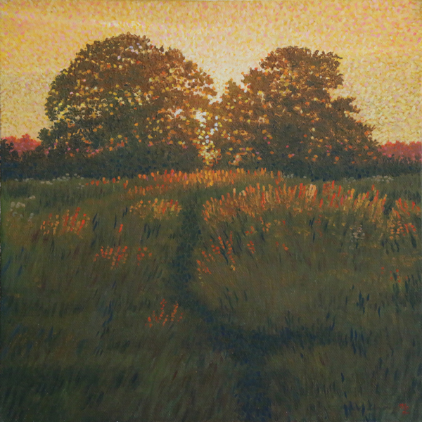 'Setting Light on Barley' - Oil on canvas not framed by Mark Langley Fine Artist - 30 x 30 cm, 1.5 cm shallow canvas edge £230. At St. John Street Gallery.