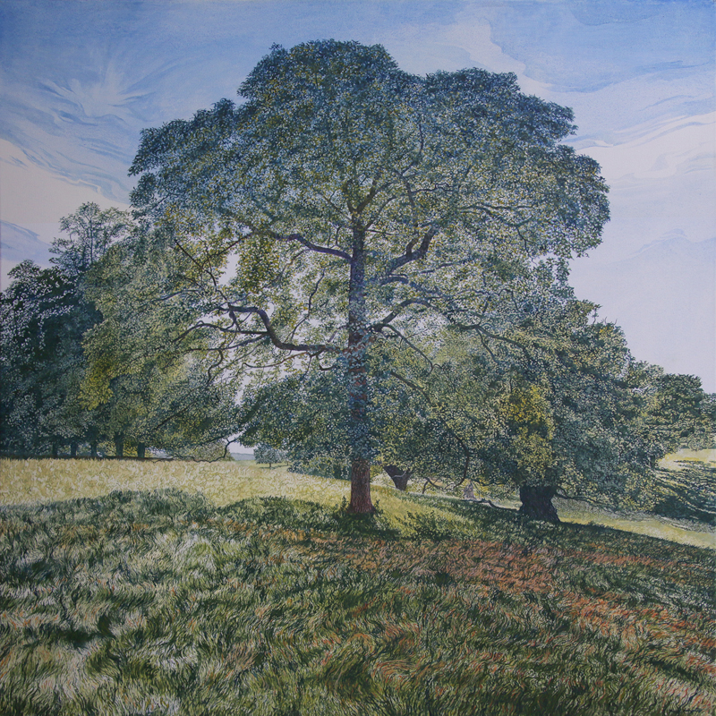 'In the Shadow of a Calke Park Tree' - Oil on canvas by Mark Langley Fine Artist - 80 x 80 cm. With existing frame £1600. At St. John Street Gallery.