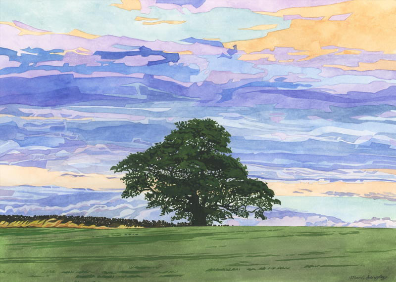 'Pale Row Tree' - Original watercolour painting by Mark Langley Fine Artist - 42 x 30 cm. With existing frame £450. Please enquire.